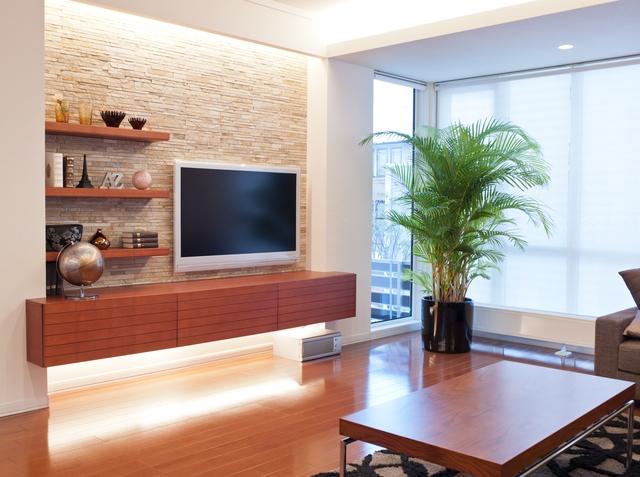リビングのテレビと横に観葉植物