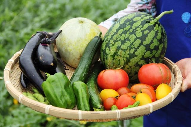 ざるに盛られた野菜と果物