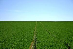 農業へfax広告で新規集客営業