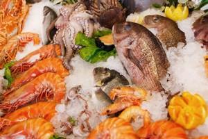 魚料理店 へfax広告で新規集客営業