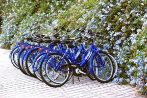 自転車へfax広告で新規集客営業